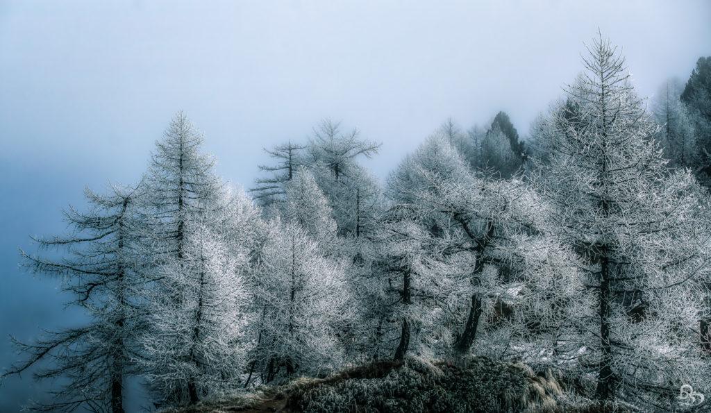 winter ticino snow switzerland