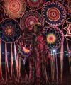 dreamcatcher wonderfruit festival